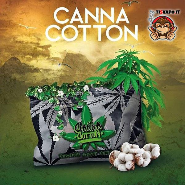 Canna Cotton - cotone di canapa