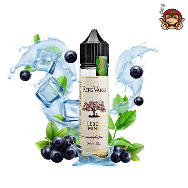 Blueberry Mint - Aroma Concentrato da 20ml - Ripe Vapes